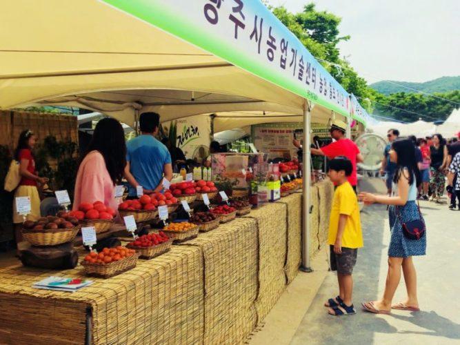 様々なカラフルトマトの販売