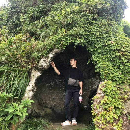 緑のツタで覆われた洞穴