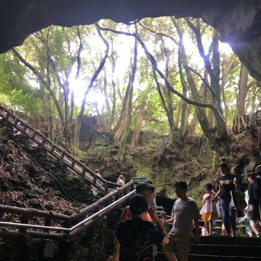 洞窟の中から見る地上の光り