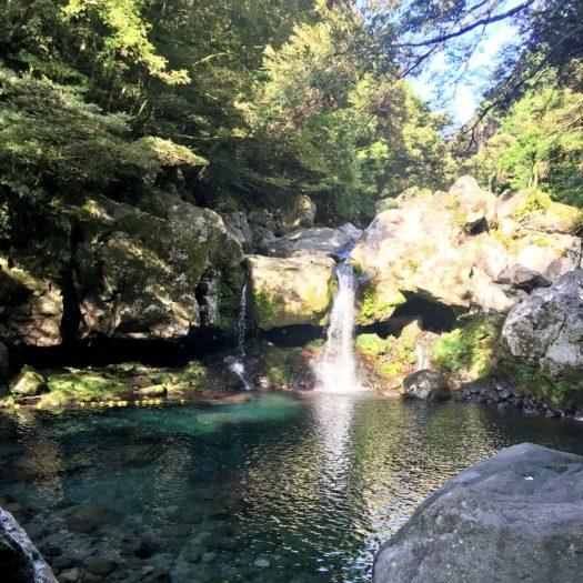 朝一番の滝