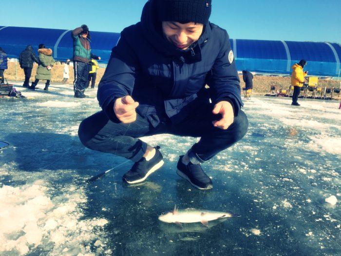 氷上に置かれた釣られた直後のマス