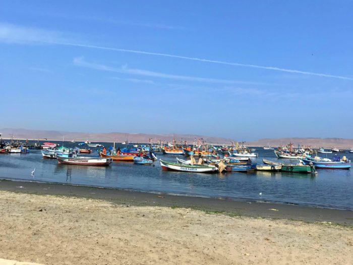 舟の浮かぶ港