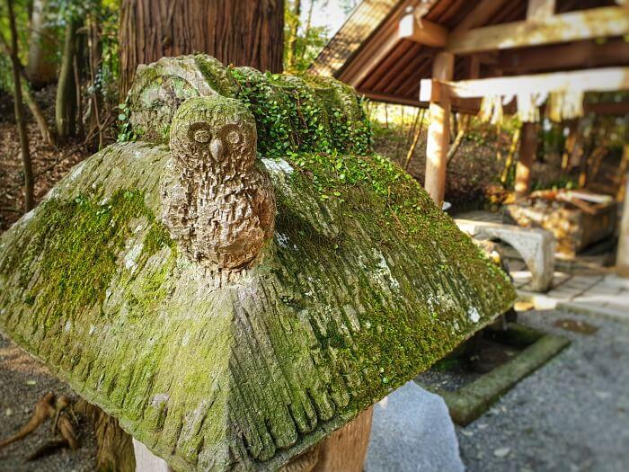 苔に覆われた境内の石