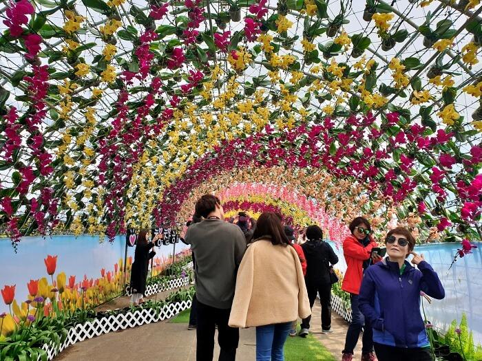 カラフルな花のアーチトンネル