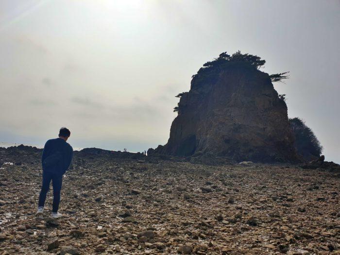 岩山に進む干潮時の海