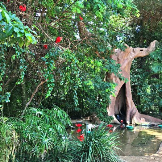 木の上で休む赤い鳥たち