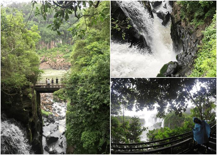 アルゼンチン側の遊歩道の滝