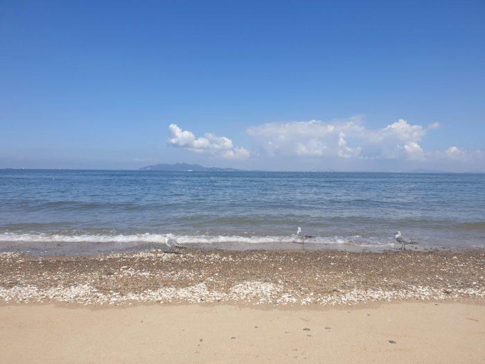 青い空と波