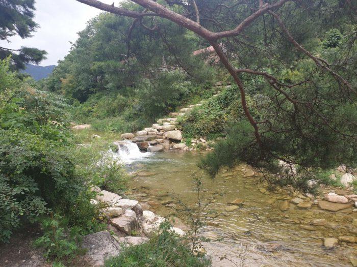 キャンプサイトからの景色