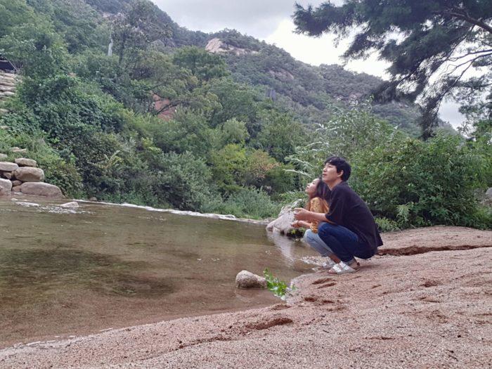 渓谷を眺める