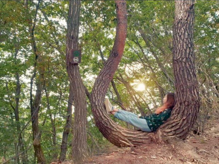 木漏れ日で休憩