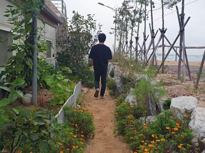 海への通り道