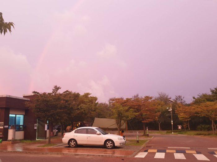 ピンクの空と虹1