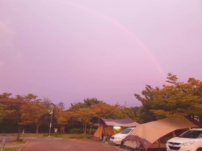 ピンクの空と虹2
