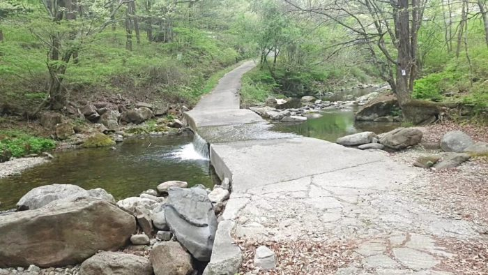 川の水が溢れてる橋