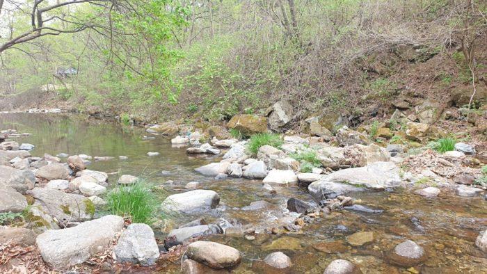 テント横の川