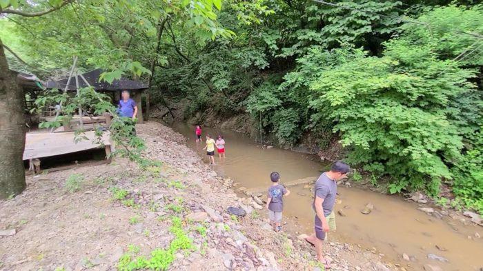 濁った水の川辺
