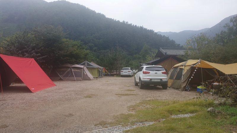 ダインキャンプ場 Bサイト