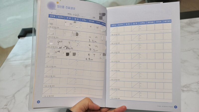 韓国の母子手帳 検診記録