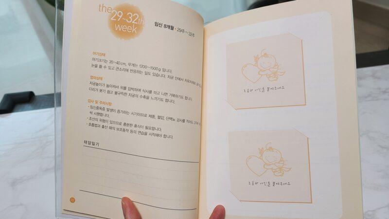韓国の母子手帳 月別ページ