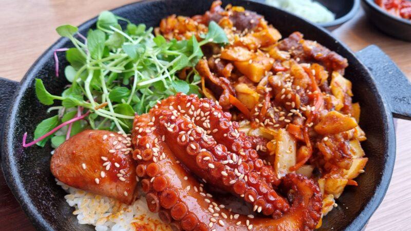 江華島グルメ 霜降り牛&タコ丼